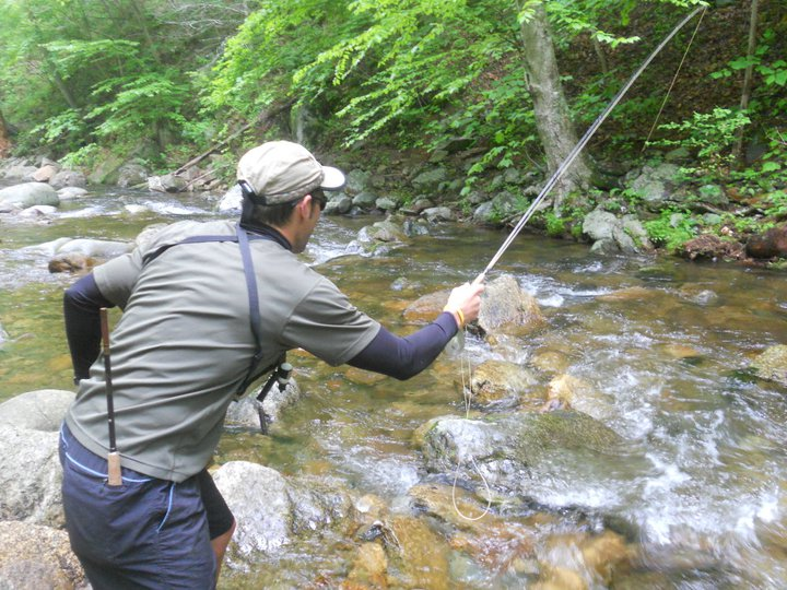 Fishmagic the shenandoah national park may 2011 for Shenandoah national park fishing