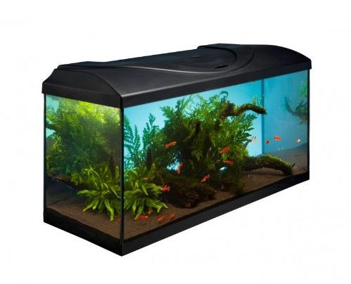 Aquarium g nstig kaufen aquarium komplettset 80x35x40 for Aquarium komplettset