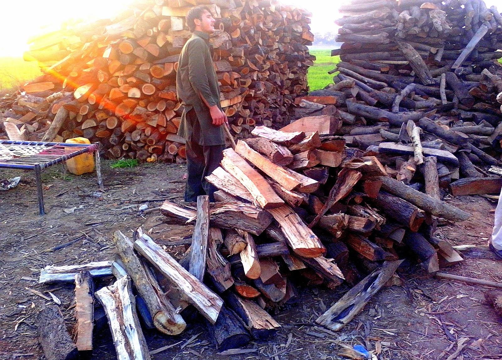 wood-cutter-pathan-pakistan