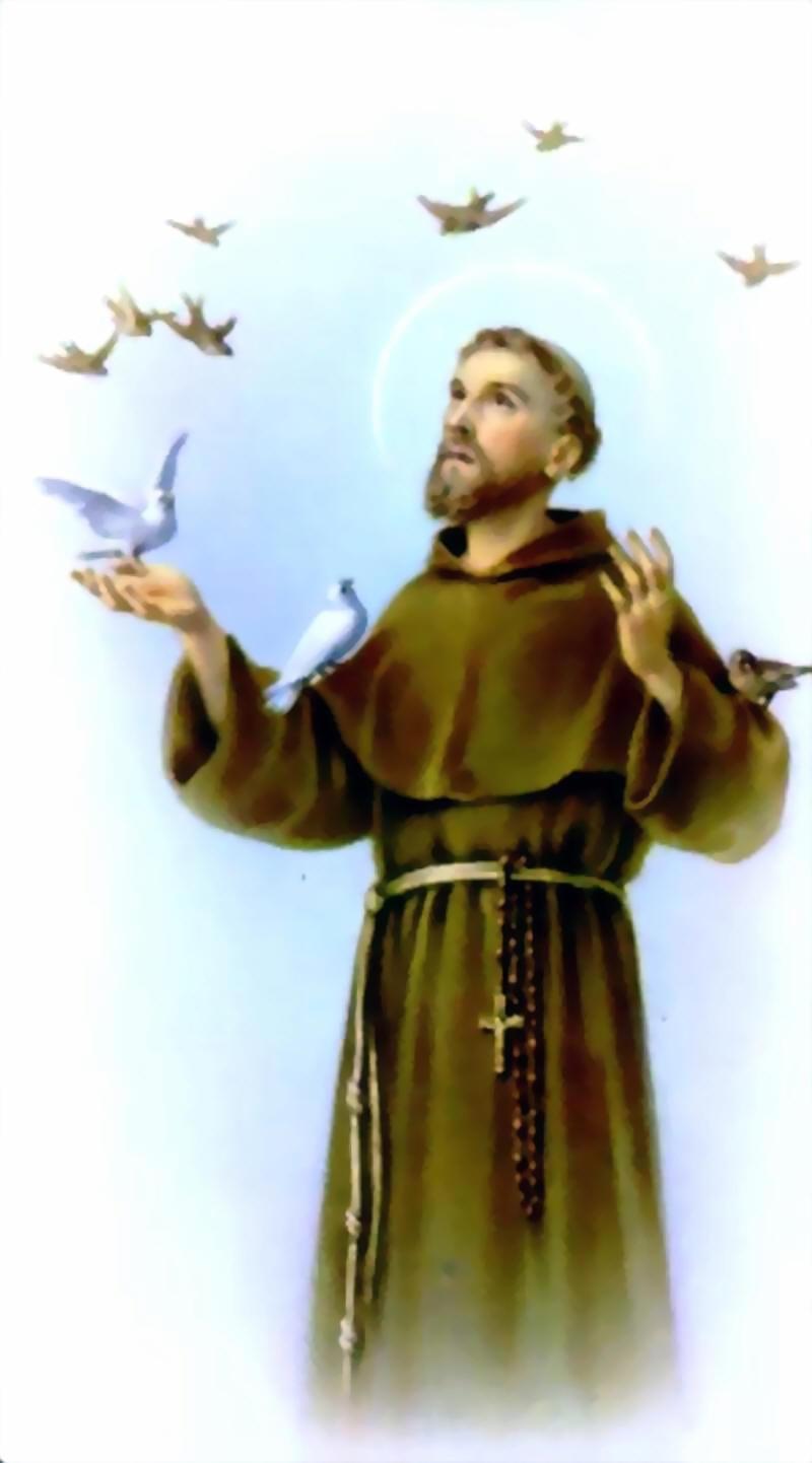 MURAL SAN FRANCISCO DE ASIS - EvangelizaciónCatólica.org