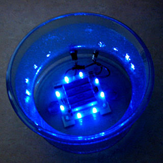 Blue Led Lights-4