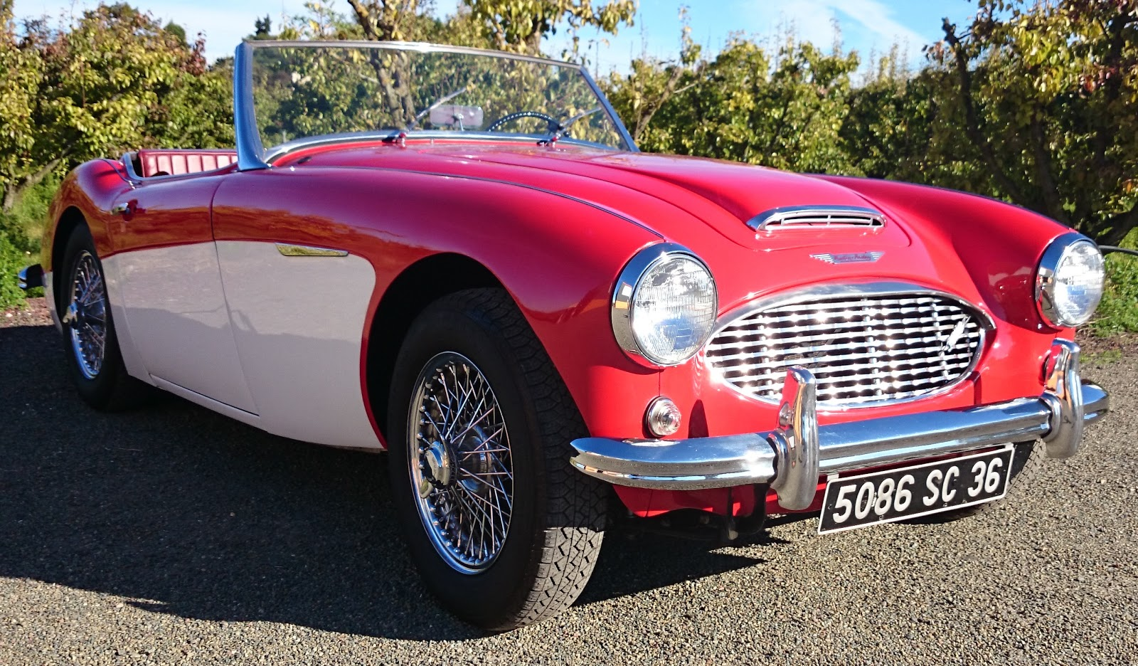 une austin healey 3000 chez mini et compagnie. Black Bedroom Furniture Sets. Home Design Ideas
