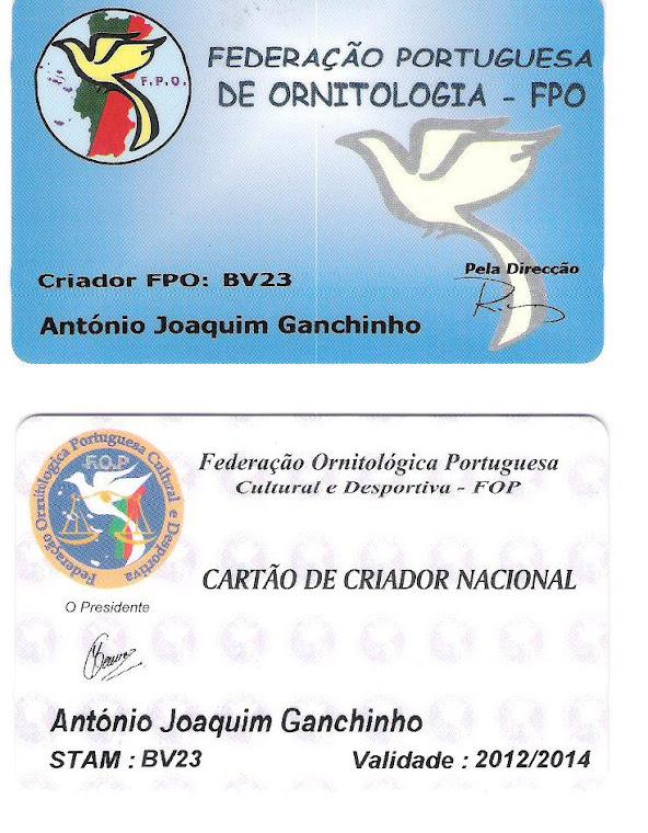 Cartão de Criador Nacional