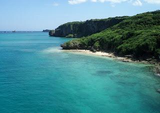 Okinawa-coast-coral