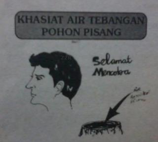 Ilustrasi rambut hitam