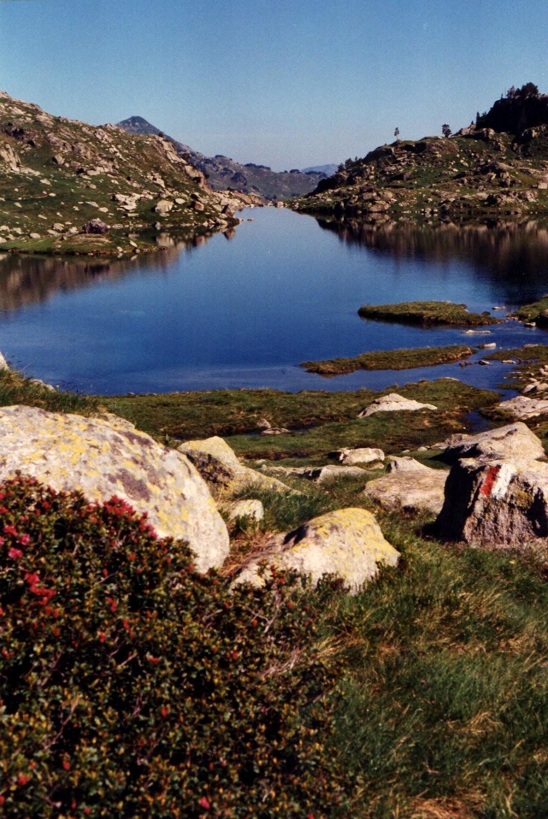 Un so ador por las cumbres mis encuentros con el valle de for America todo un inmenso jardin