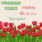 Wiosenne Candy u Magos