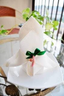 Butterfly Napkin Folding Example