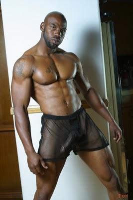 Os Escravos Do Seo Gay Direto Mundo Para O Nosso Blog Vamos Parar