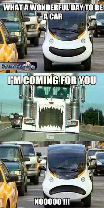 funny things car picture