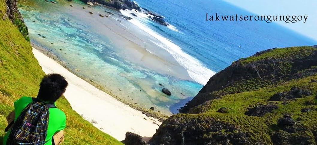 Lakwatserong Unggoy