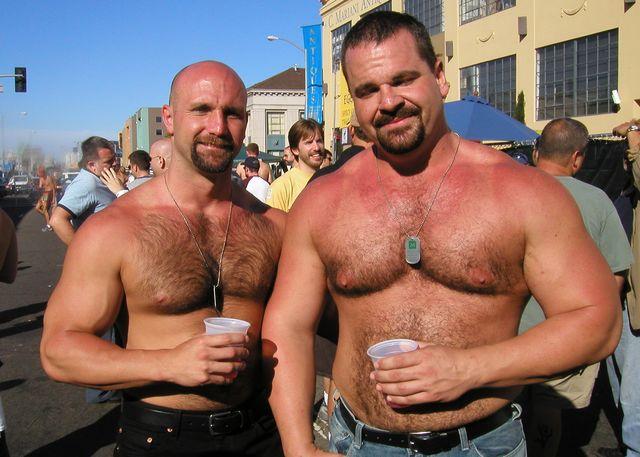 Фото гей медведи