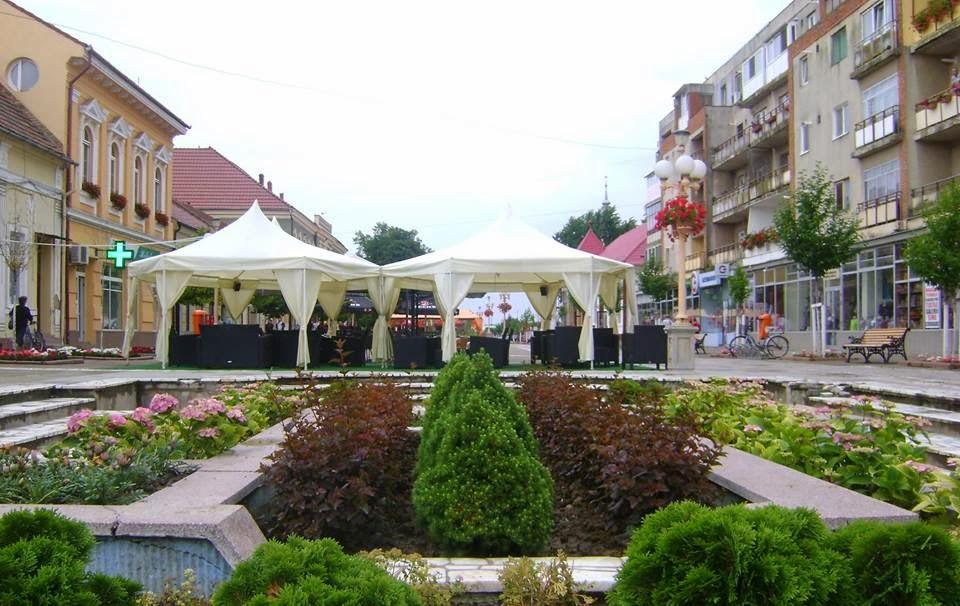 In centrul orasului Sannicolau Mare