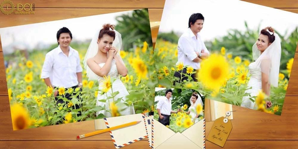 Vườn hoa hướng dương - Địa điểm chụp ảnh đẹp ở Hà Nội
