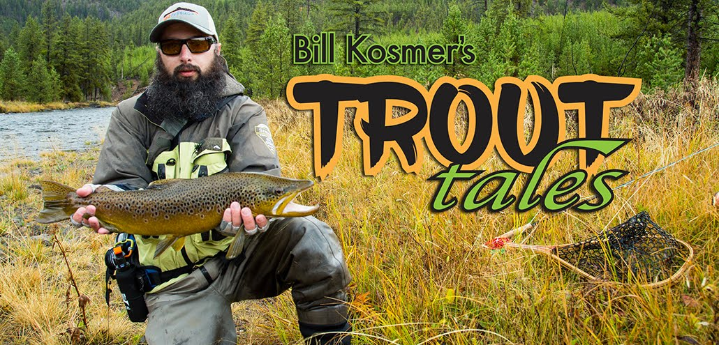 Trout Tails by Bill Kosmer
