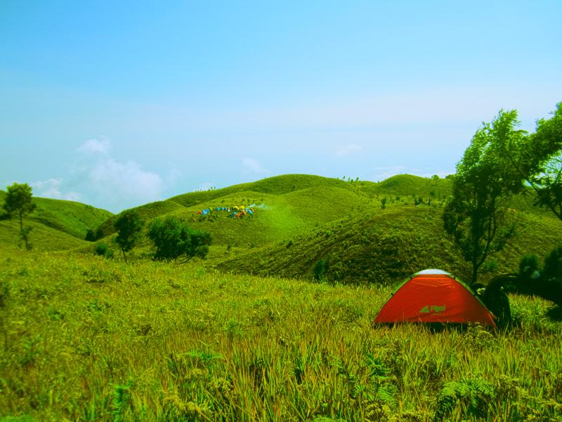 Image result for Bukit Teletubies Gunung Prau Dieng