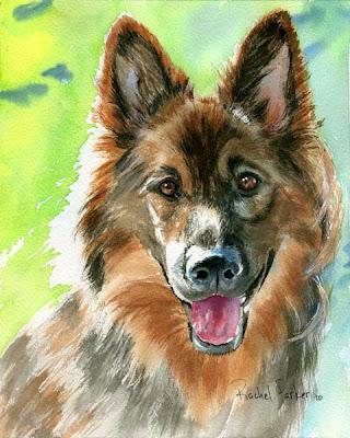 https://www.etsy.com/listing/42148276/german-shiloh-shepherd-dog-art-print-of?ref=favs_view_8