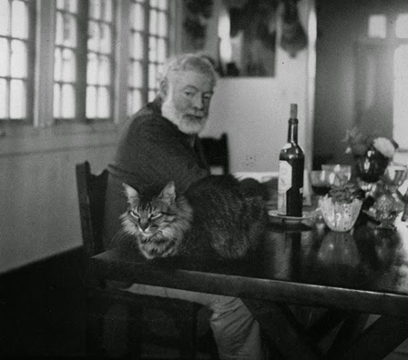 Hemingway looks at this cat Cristobal on a table in Finca Vigia.