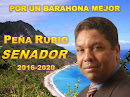 Pedro Peña Rubio 2016