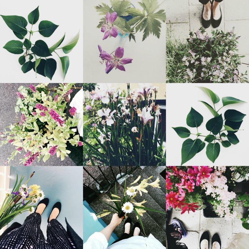 kukkakuvia instagrammissa