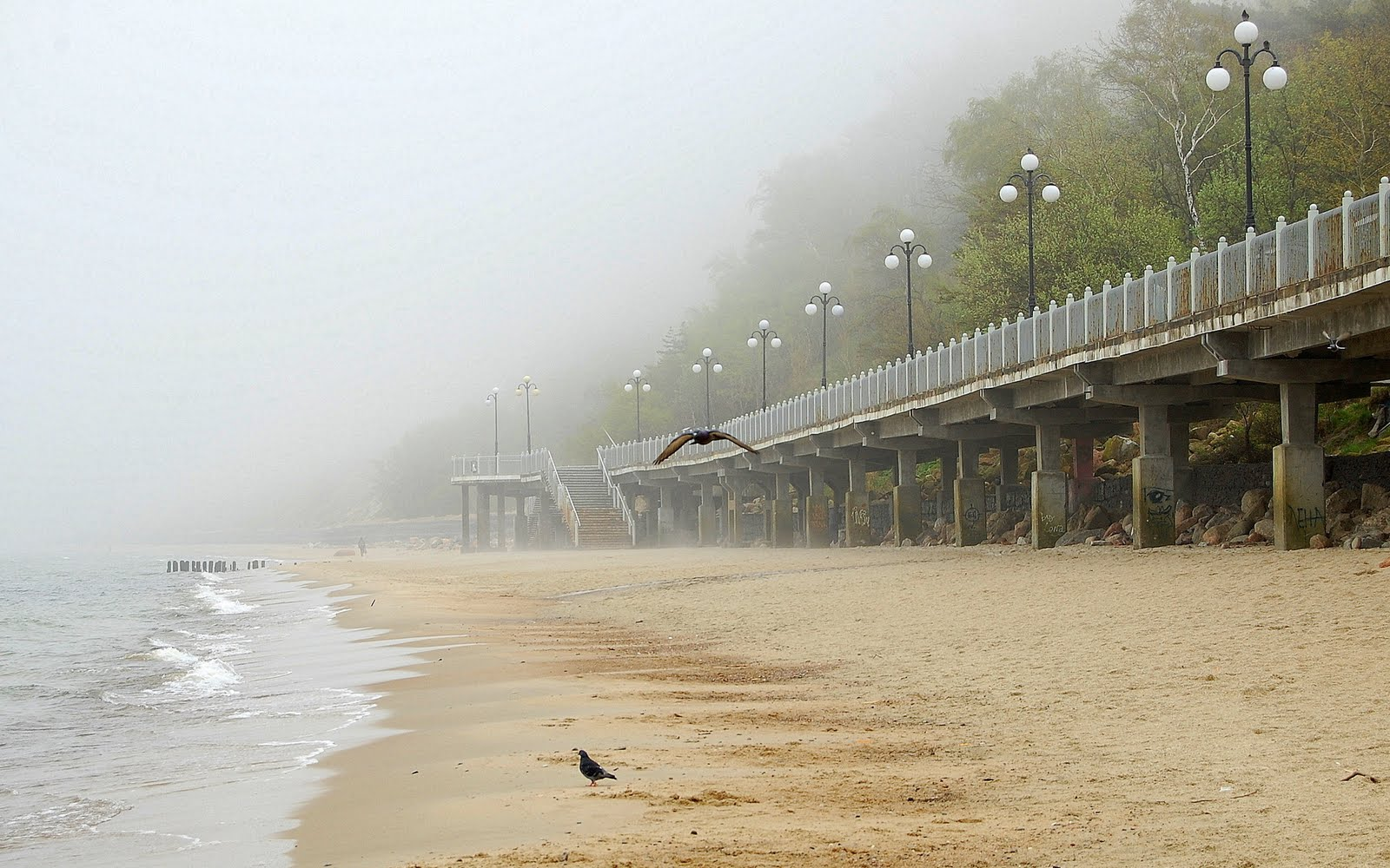 Promenade Cliffs At The Beach Foggy Weather Wallpaper