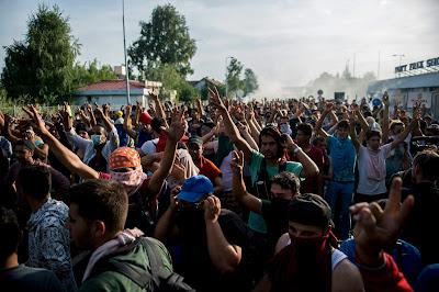 magyar-szerb határ, Horgos-Röszke, illegális bevándorlás, migráció, Magyarország,