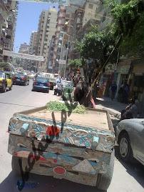 شارع خالد بن الوليد من جهة الترام خلال غياب الأمن والمرور وشرطة المرافق