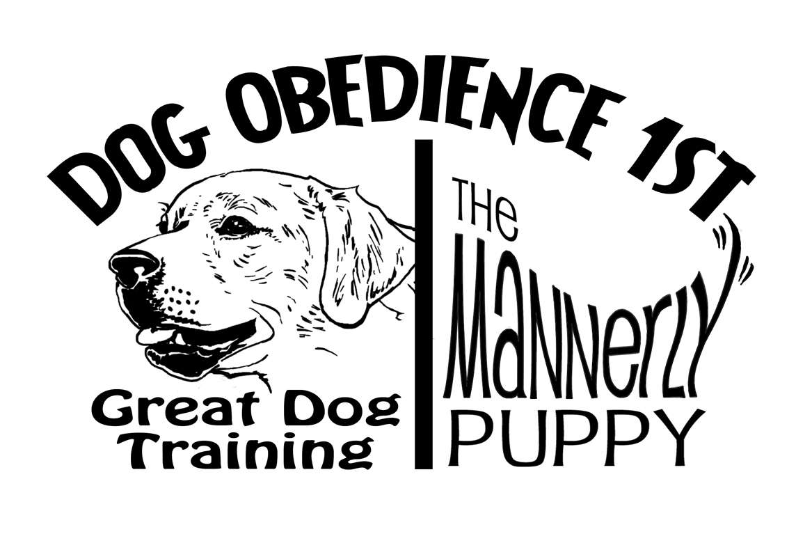 Dog Obedience 1st, LLC
