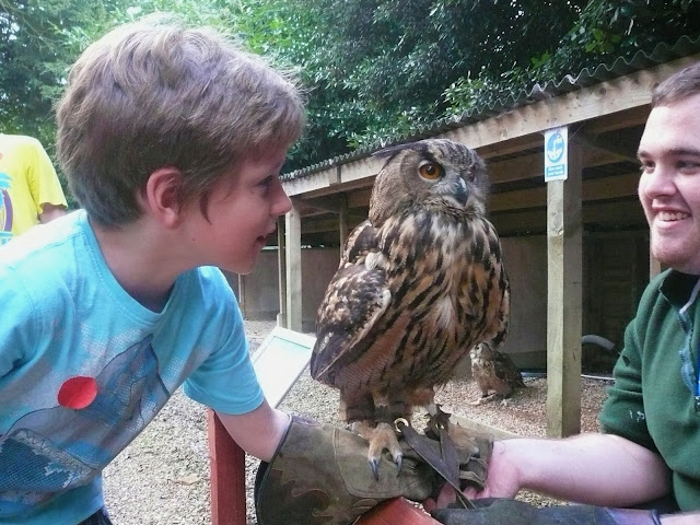 Holding an owl