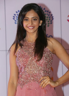 Actress Rakul Preet Singh Latest Pictures in Long Dress at Memu Saitam Dinner with Stars Red Carpet  35)