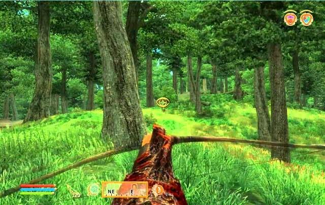 The Elder Scrolls 4 Oblivion PC Games Gameplay