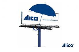 Alico Egypt jobs