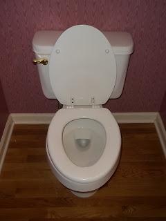 ecofriendly toilets