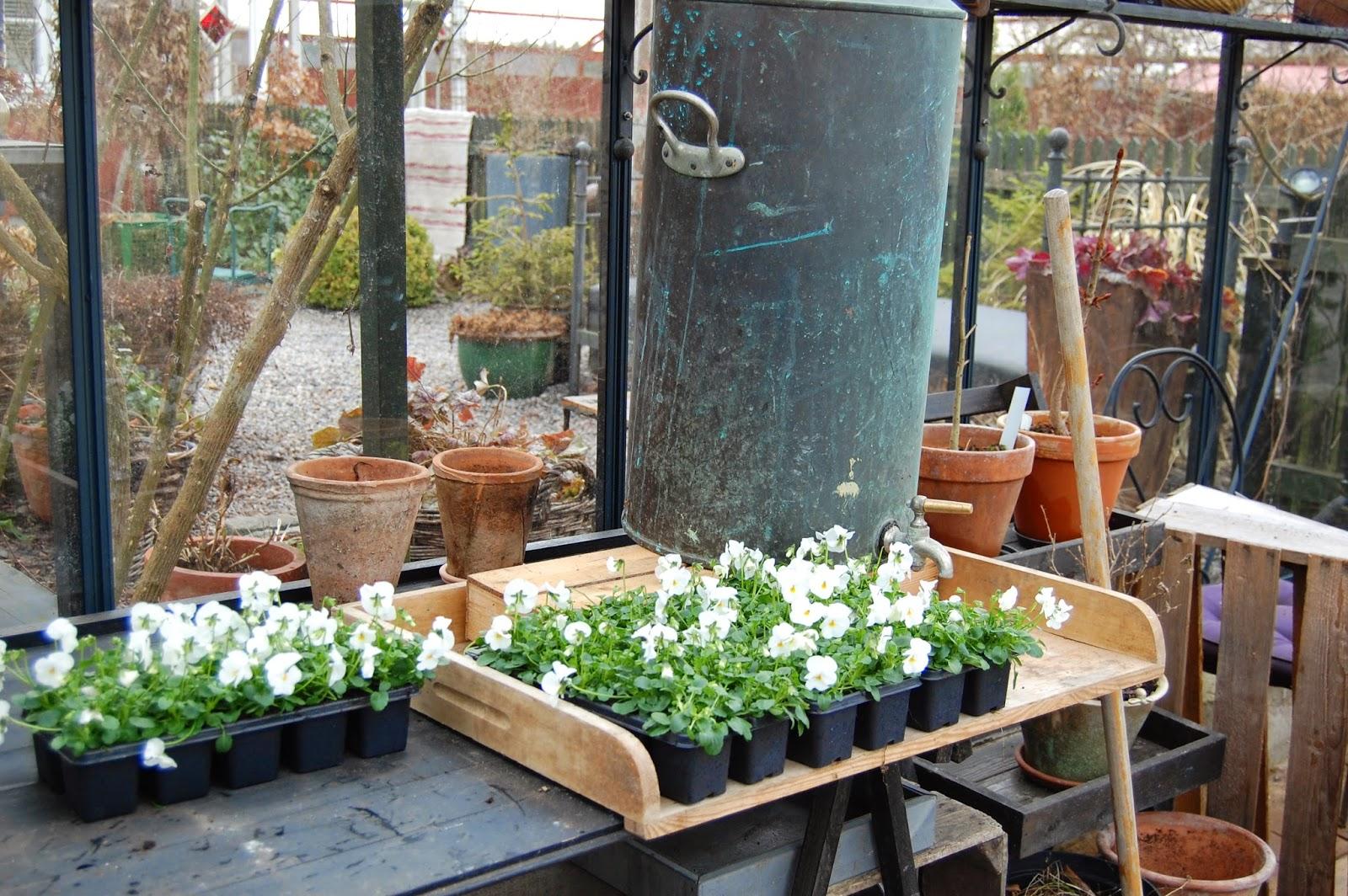 M/S DESIGN Trädgård och Keramik: mars 2015
