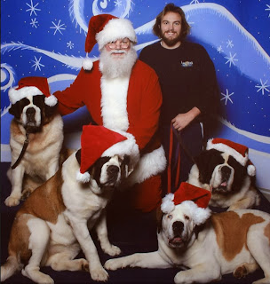 Santa Dan and the St. Bernard Puppies
