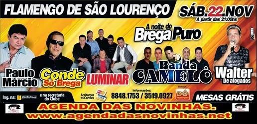 FLAMENGO DE SÃO LOURENÇO - A NOITE DO BREGA PURO.