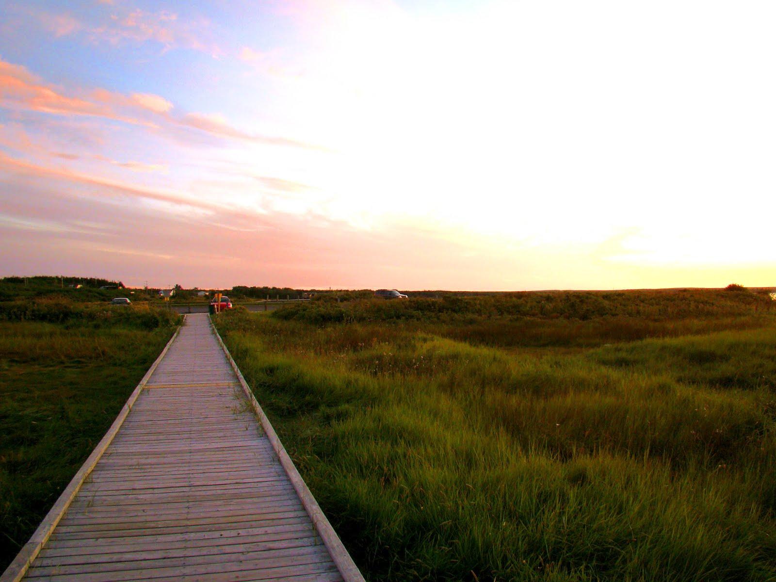 1000  images about cape breton  nova scotia on pinterest