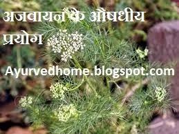 home remedies with ajwain