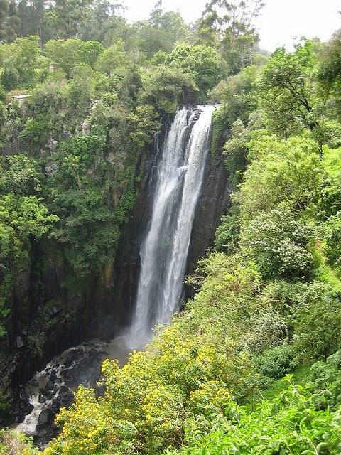 Cascada Thomson Kenia