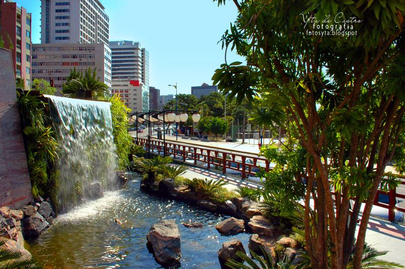 imagens jardim japones:Fotos Yta :.: Jardim Japonês, Fortaleza