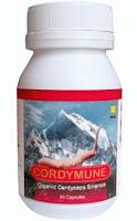 "cordymune-meningkatkan-kekebalan-imunitas-tubuh-anti-kanker-tumor-degeneratif-asam-urat-jantung-koroner-kolesterol-hipertensi-diabetes-natural-nusantara-inti-herbalindo"""