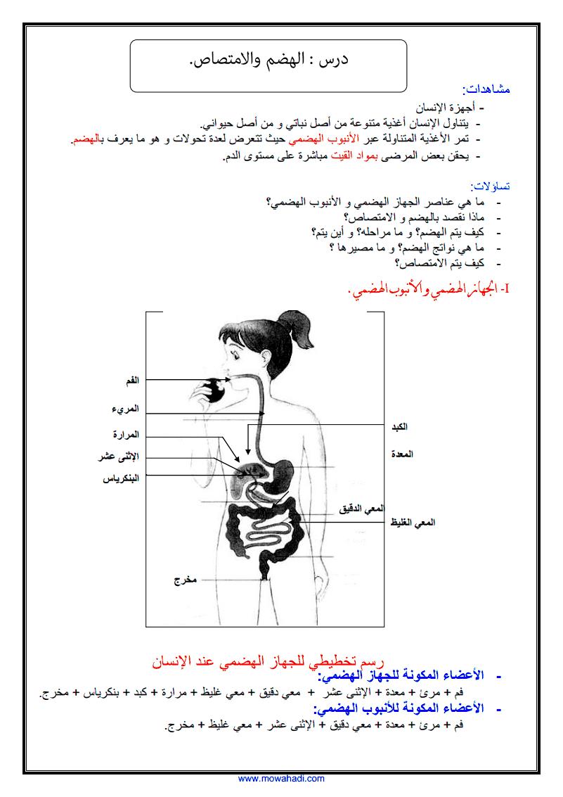 درس الهضم و الامتصاص الصفحة1
