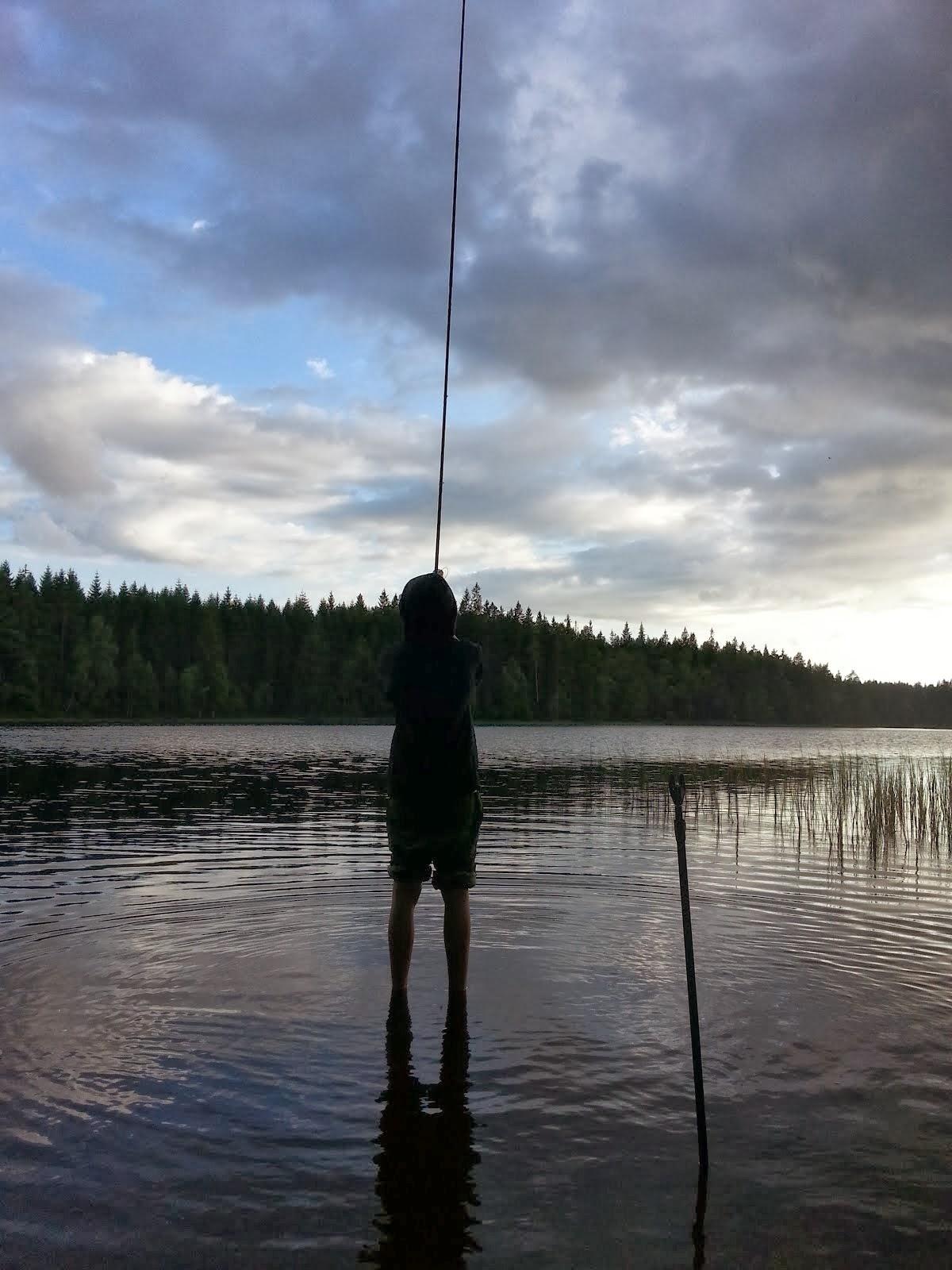 FISKEVÄN LÄGGER UT SPÖT