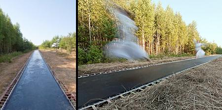 Trampoline Pathway