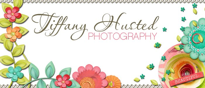 Tiffany Husted Photography