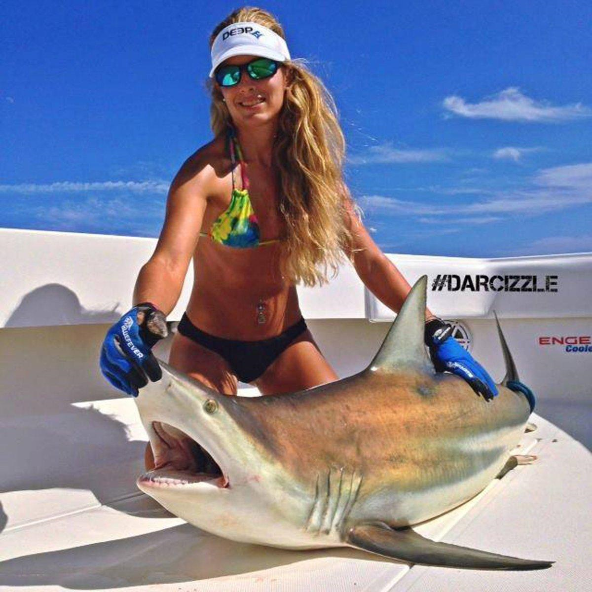 Darcizzle  Offshore and the Left Shark