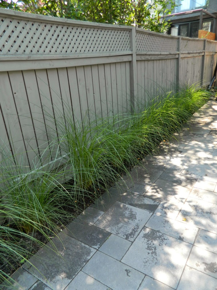 Greektown garden design after by Paul Jung Gardening Services Toronto