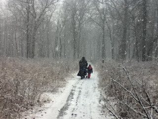 Walking the trail at Ojibway as the snow falls thick.