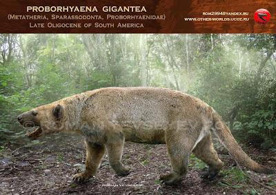 marsupiales prehistoricos de Argentina Proborhyaena