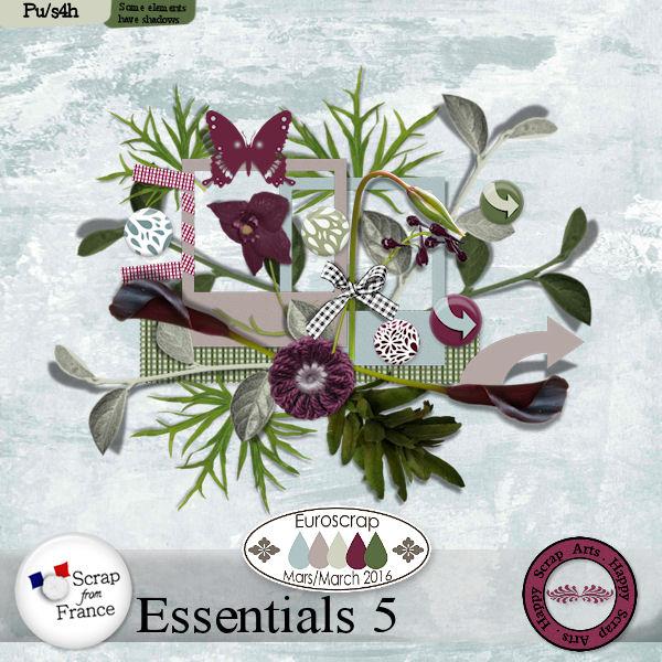 Maart 2016 - HSA Essential 5